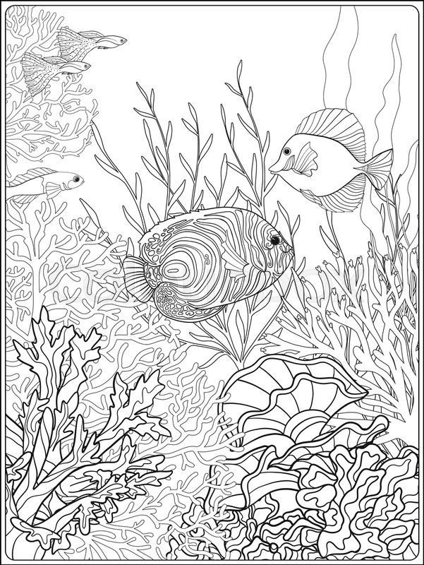 adult coloring book stock vector colourbox coral reef 800px colourbox29048389 easter coloring pages Coral Reef Coloring Page