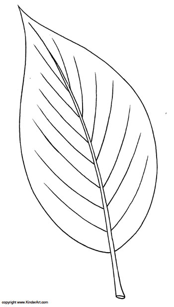 ash leaf coloring kinderart ashleaf nativity to color washable paint no stains coin coloring pages Leaf Coloring Page