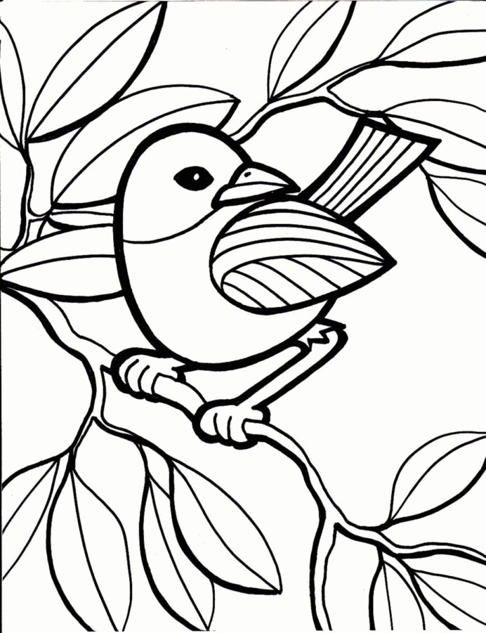 best image of bird coloring albanysinsanity animal free book pdf if you could any toddler coloring pages Bird Coloring Page
