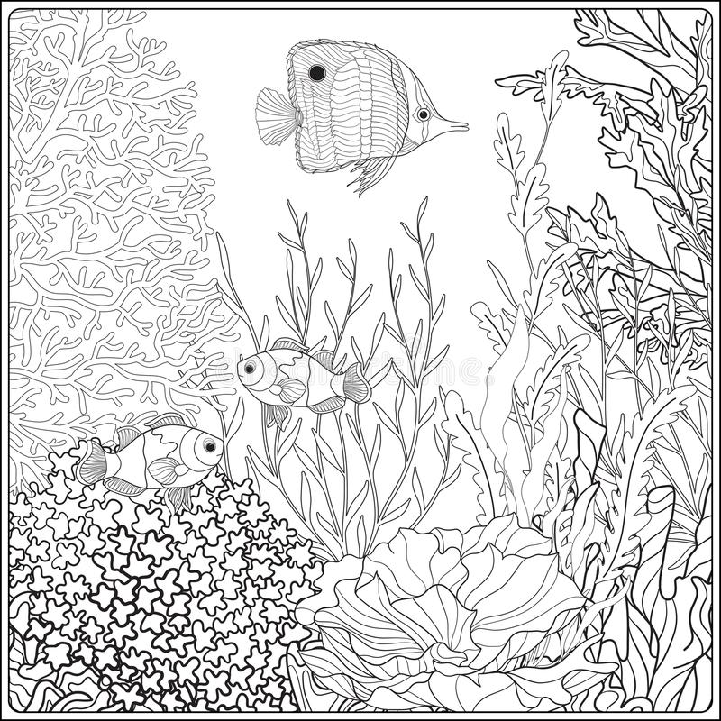 coloring with underwater world coral reef corals fish and seaweeds stock illustration of coloring pages Coral Reef Coloring Page