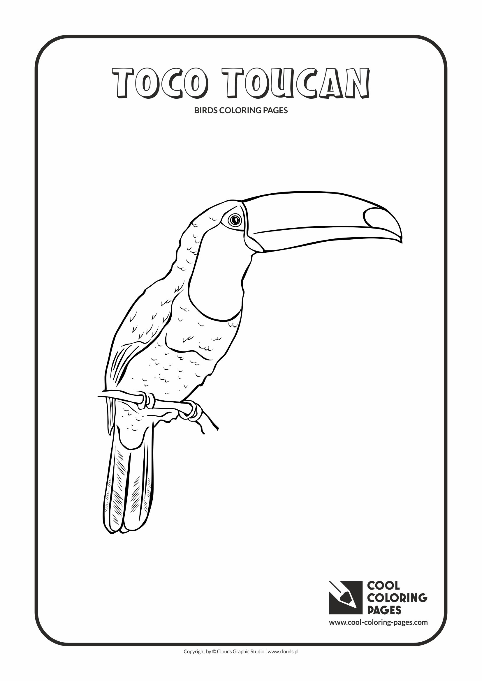 cool coloring toco toucan free educational and activities for kids birds spiderman phone coloring pages Toucan Coloring Page