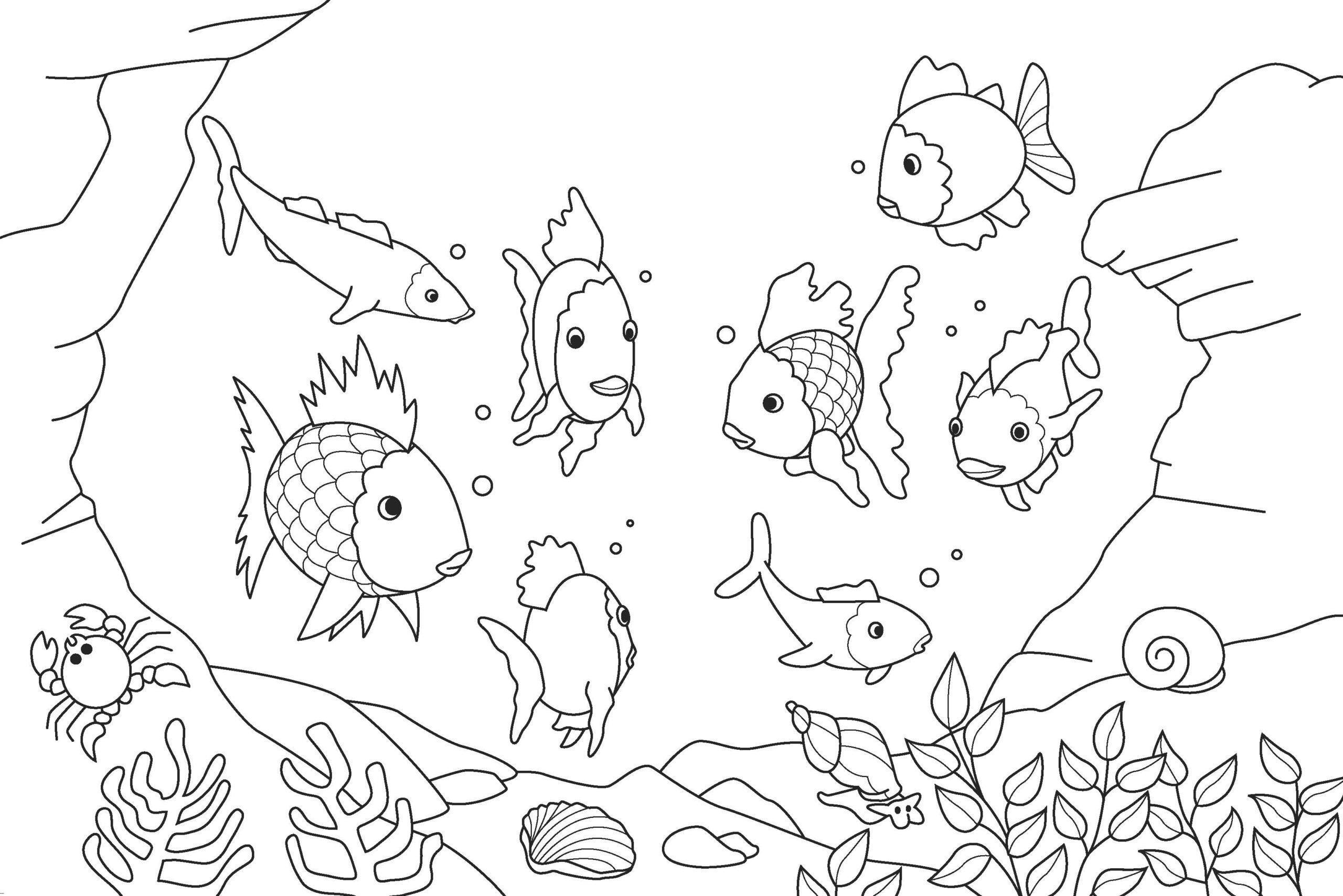 fish coloring and malvorlagan my first advent calendar gold slime supplies small coloring pages Fish Coloring Page