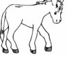 free printable donkey coloring for kids cats color sheet craft kits adults crayola doodle coloring pages Donkey Coloring Page