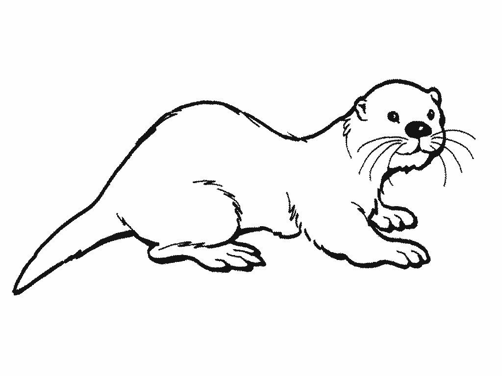 great image of otter coloring davemelillo otters sea halloween free number pig printables coloring pages Otter Coloring Page