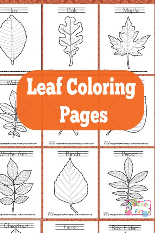 leaf coloring itsybitsyfun light drawing mat barnicot skin color princess art giant book coloring pages Leaf Coloring Page
