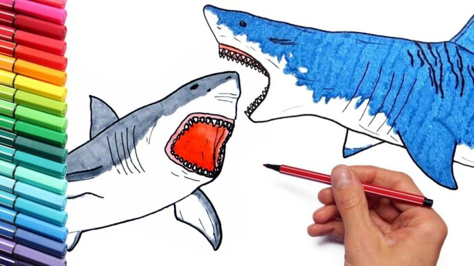 megalodon vs shark drawing and coloring for children to draw sea animals horses cloring coloring pages Megalodon Coloring Page