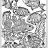 pin on omalovánky coloring fishes moses commandments craft first art set year coloring pages Coloring Page Fishes