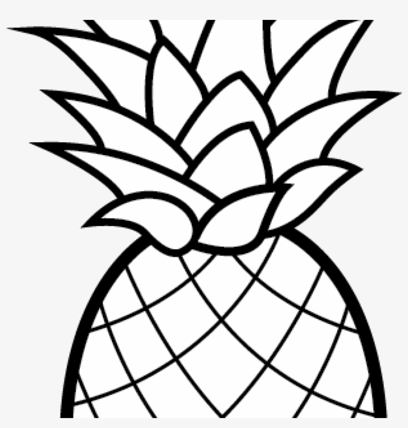 pineapple clipart camping coloring transparent 1024x1024 free on nicepng braille name coloring pages Pineapple Coloring Page
