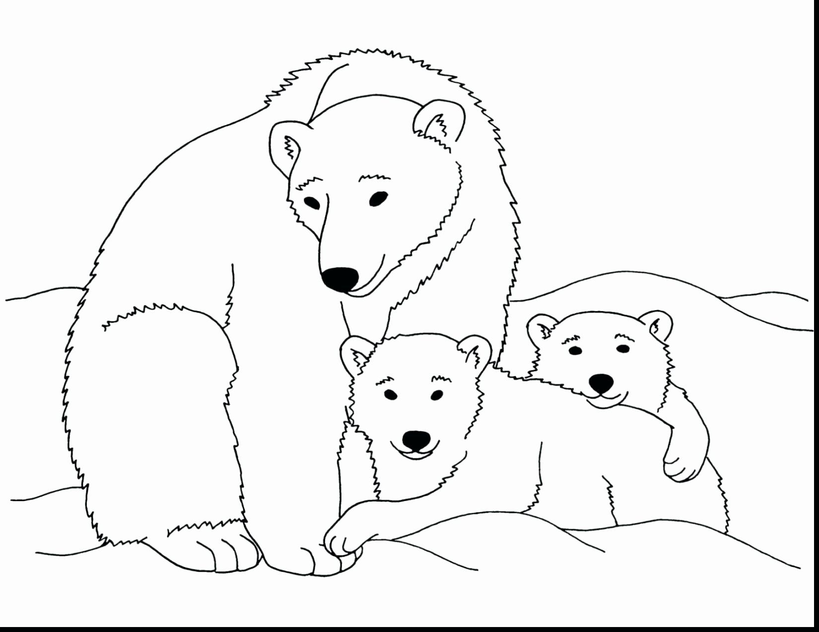 polar bear coloring peepsburgh express best friends my child ate lip liner cool pictures coloring pages Polar Express Coloring Page