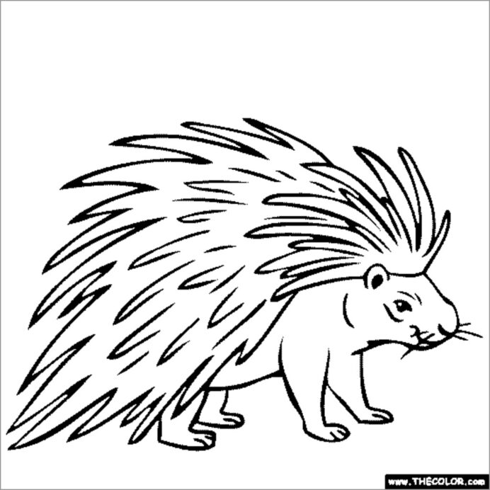 porcupine coloring for kids coloringbay deep sea detectives crayola factory coupon things coloring pages Porcupine Coloring Page