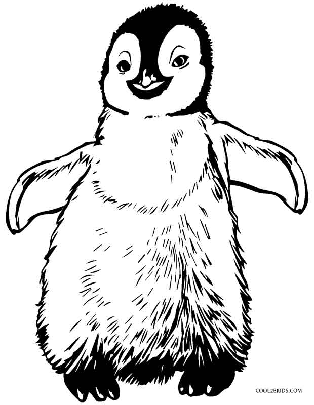 printable penguin coloring for kids free broad line markers homophone pictures on scroll coloring pages Penguin Coloring Page