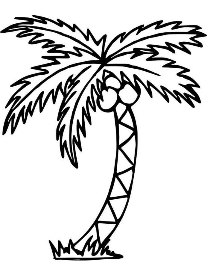remarkable palm tree coloring ideas leaf pattern leaves to print for preschoolers crayon coloring pages Palm Tree Coloring Page