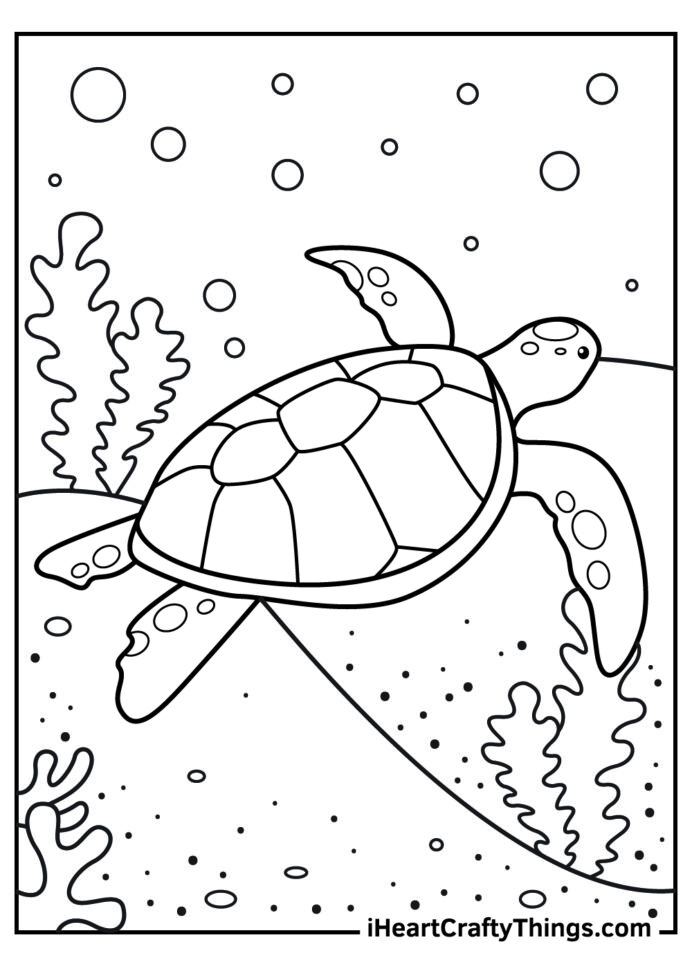 sea turtle coloring updated cool for boys old wax crayon tin remove crayons from walls coloring pages Turtle Coloring Page