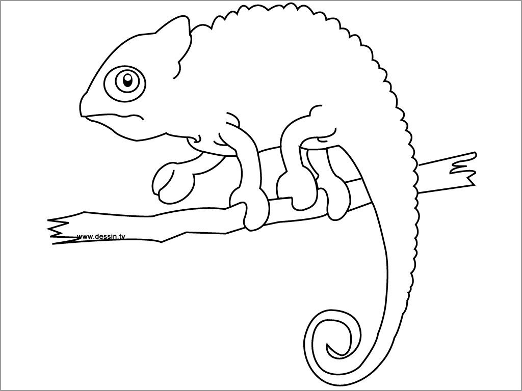 simple chameleon coloring coloringbay paddle wheel steamboat princesses killer whale coloring pages Chameleon Coloring Page