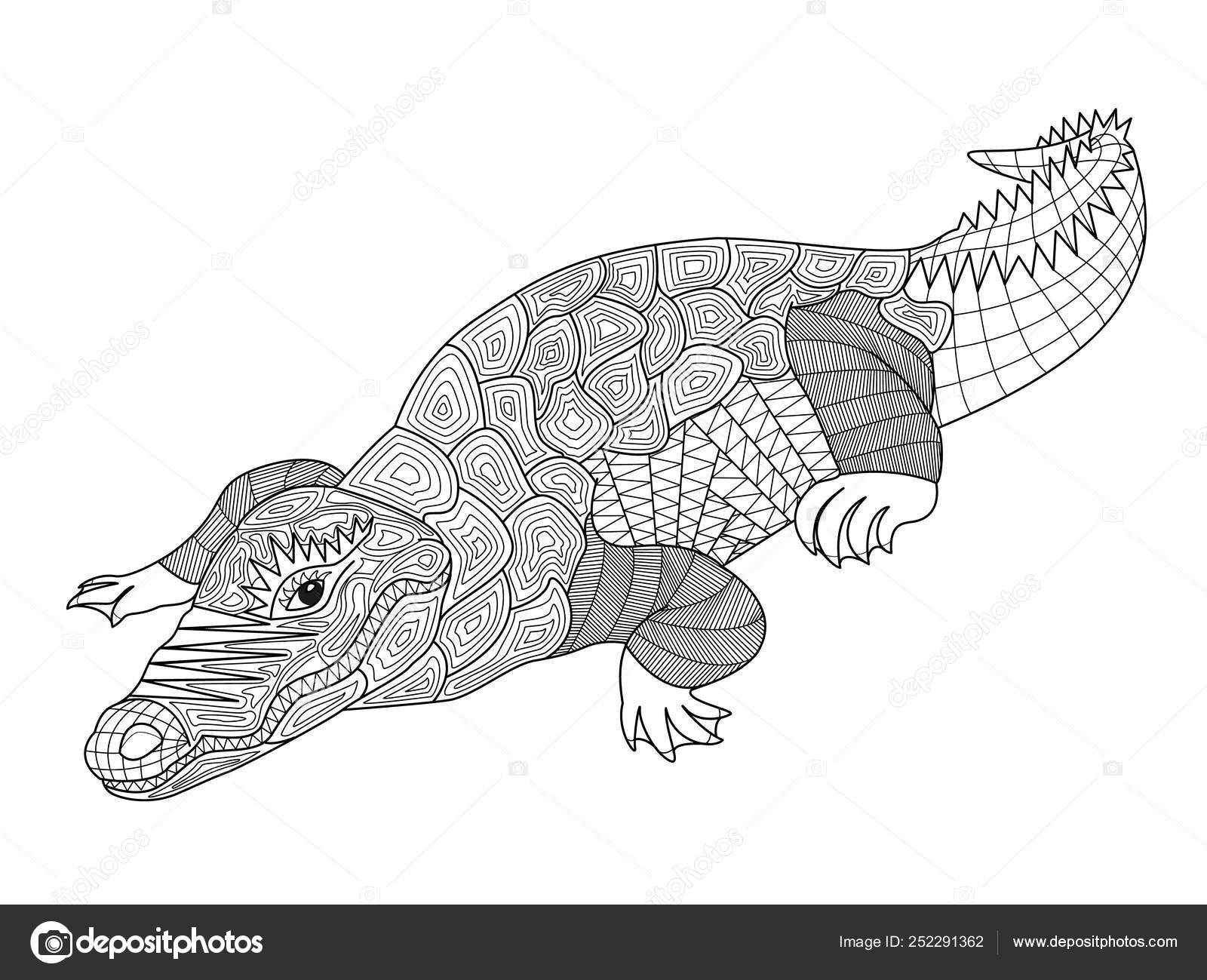 zentangle crocodile coloring for adults and children vector illustration of model anti coloring pages Crocodile Coloring Page