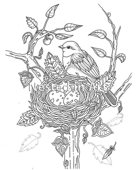 adult coloring bird with nest original art digital disegni washable acrylic paint for coloring pages Bird Nest Coloring Page