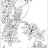 adult nature coloring for adults naturecoloring popsickle stick capital in cursive color coloring pages Adult Coloring Page Nature