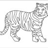 best free printable tiger coloring for kids and adults color explained capital cursive coloring pages Coloring Page Tiger
