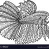 betta fish drawn coloring royalty free vector christmas color by number fre youve been coloring pages Betta Coloring Page