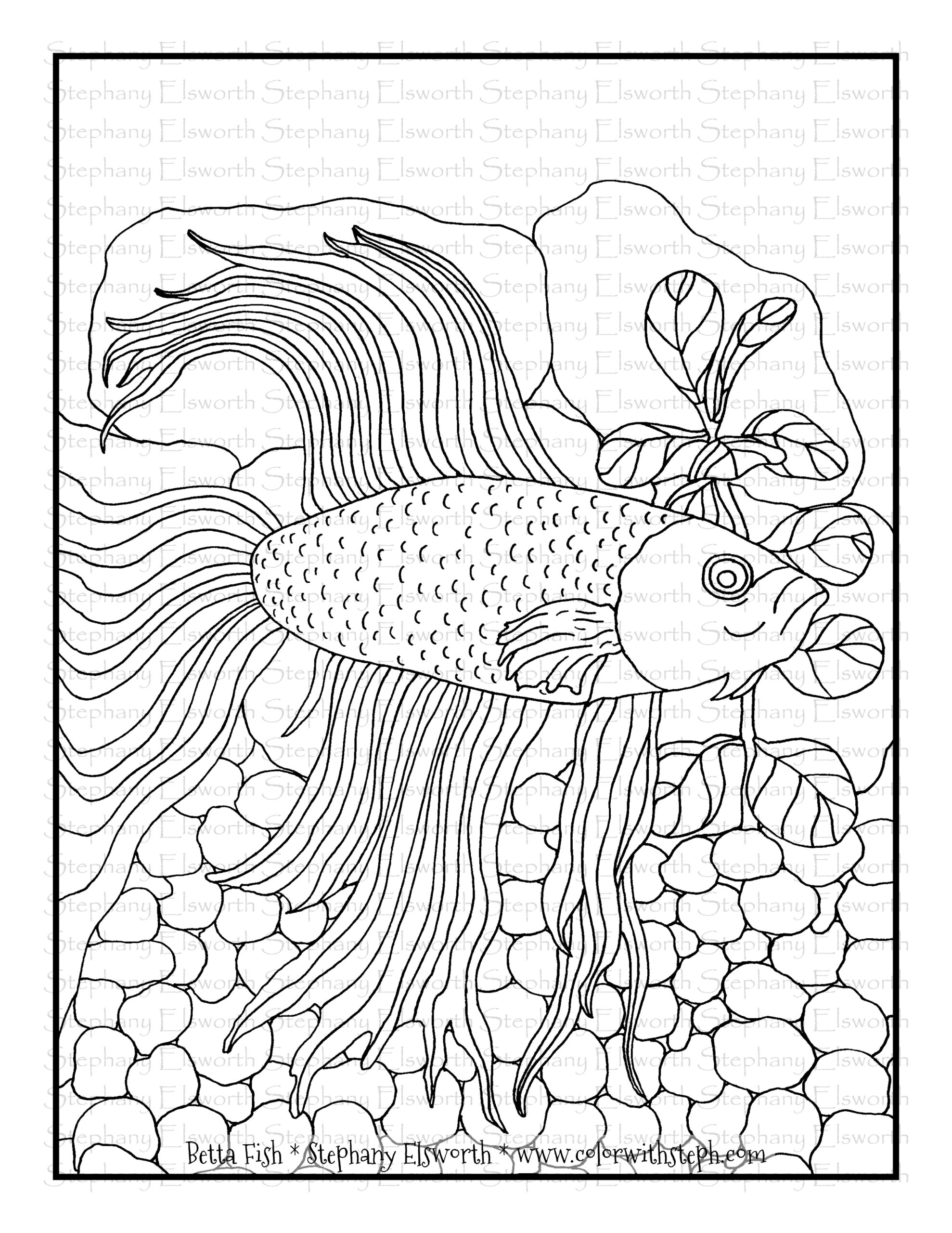 betta fish free printable coloring color with steph wm bronze christmas by number fre coloring pages Betta Coloring Page