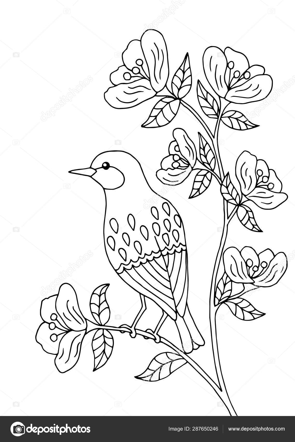 bird sitting on coloring stock vector image by elvirkindom yandex ru tree depositphotos coloring pages Tree Branch Coloring Page