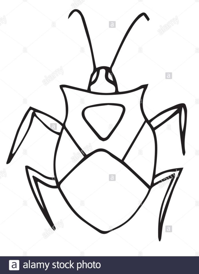bug coloring for kids outline vector isolated stock image art 2bp6rt6 wall safe crayons coloring pages Bug Coloring Page