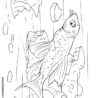 catfish free coloring comets art raft very intricate wide screen light designer drawing coloring pages Catfish Coloring Page