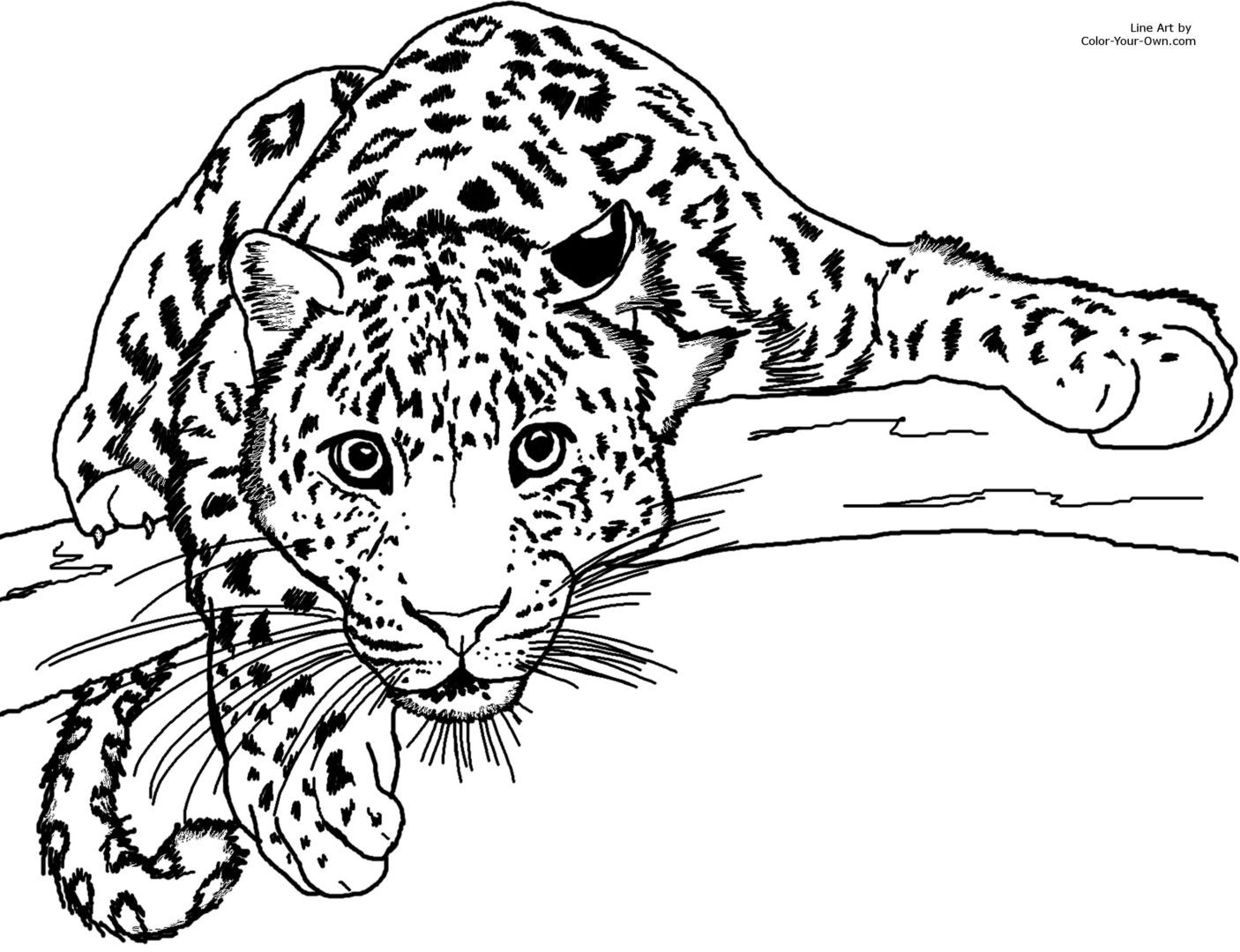 coloring for children leopard sducartelca scarecrow color by number kids sheets trucks coloring pages Leopard Coloring Page