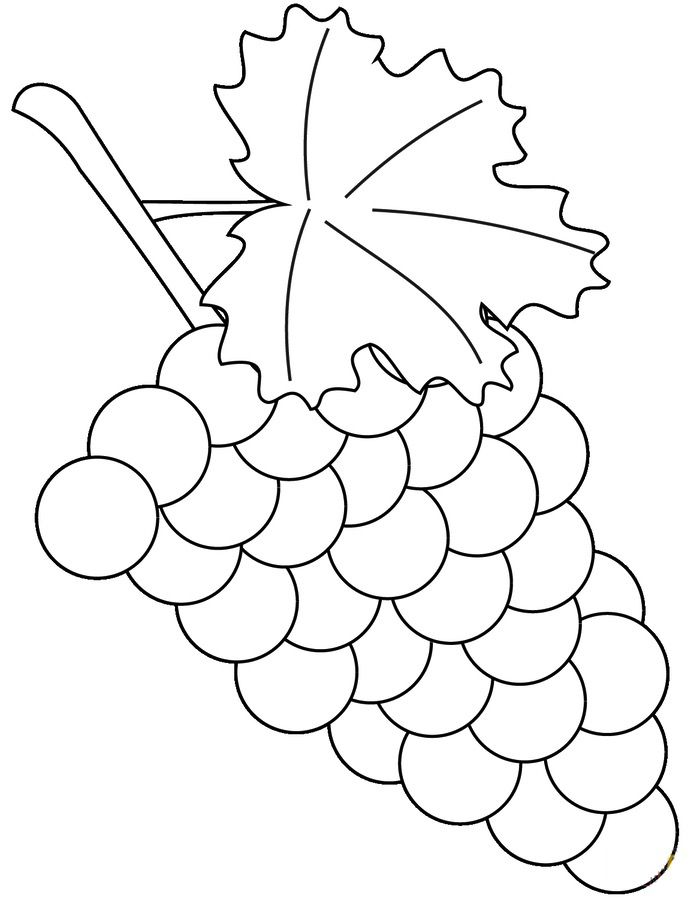 coloring grapes printable for kids adults free to grape grapes10 halloween images pencil coloring pages Grape Coloring Page
