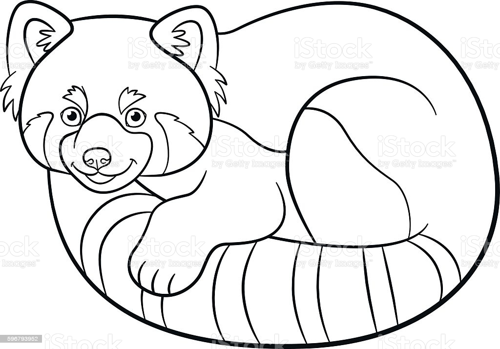 coloring little cute red panda stock illustration image now fire truck sheets paint books coloring pages Red Panda Coloring Page