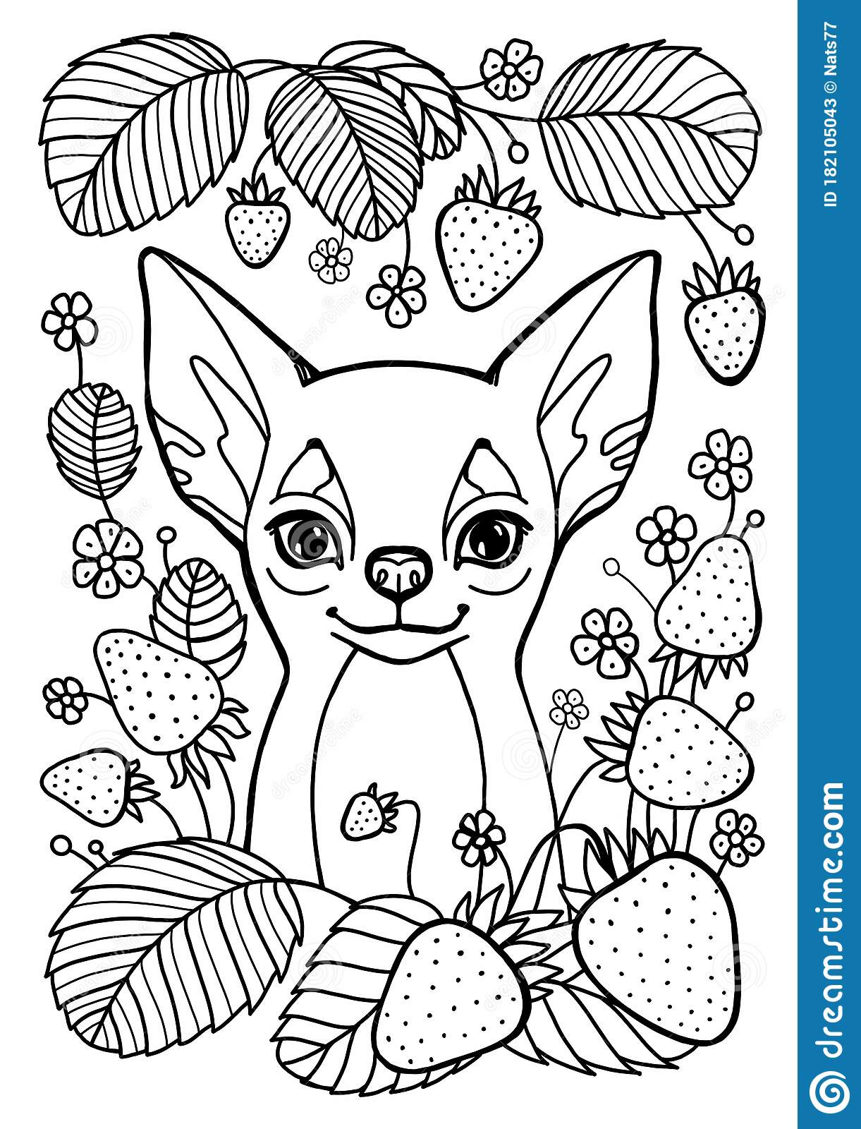 coloring lovely dog with heart for valentines card anti stress colouring chihuahua coloring pages Chihuahua Coloring Page