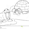 coloring north pole stock vector illustration of profile walrus igloo sharks babies coloring pages North Pole Coloring Page