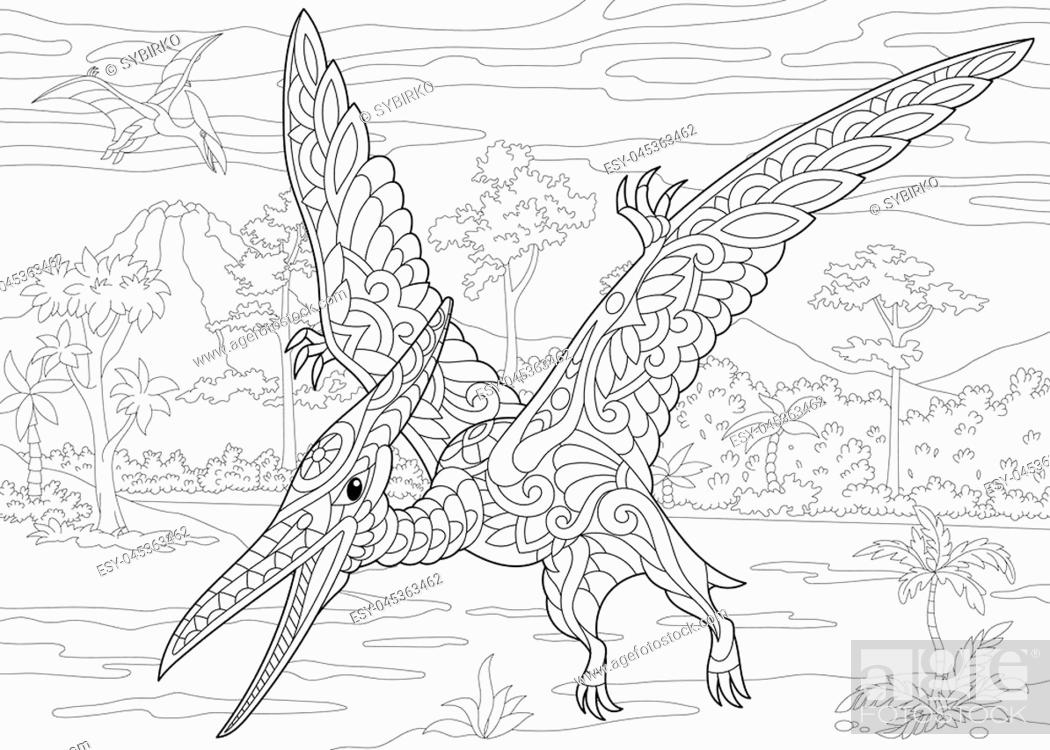 coloring of pterodactyl dinosaur pterosaur the late jurassic period stock vector and low coloring pages Pterodactyl Coloring Page