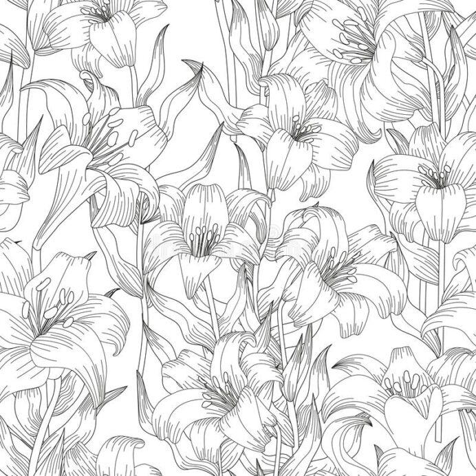 coloring seamless pattern with lilies stock vector illustration of natural blossom lily coloring pages Lily Coloring Page