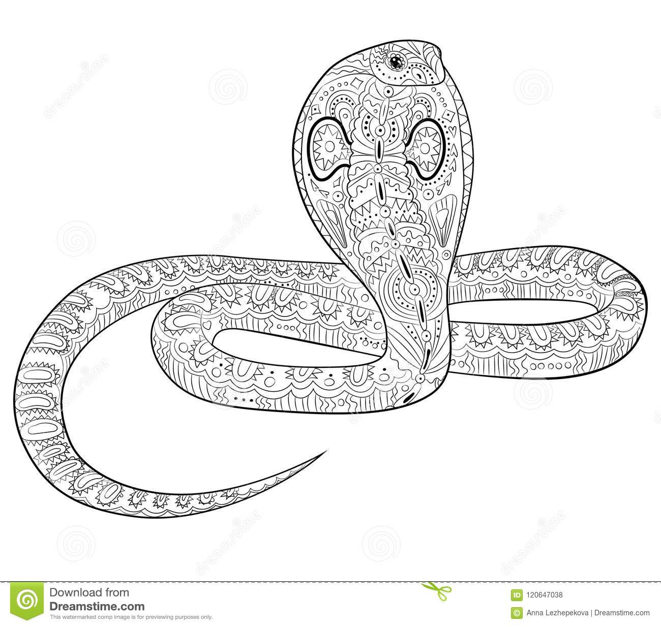 coloring with snake in zentangle style stock vector illustration of species reptile black coloring pages Reptile Coloring Page