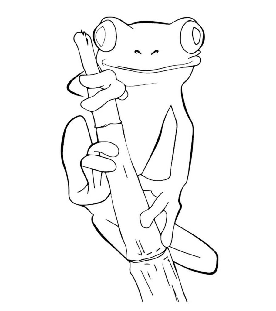 delightful frog coloring for your little ones drawing art shaded quarters coins skeleton coloring pages Coloring Page Frog