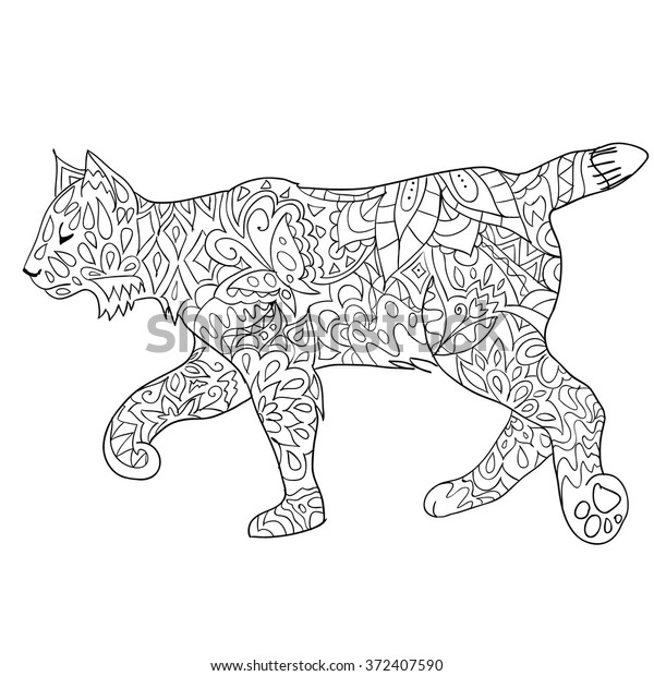 drawn bobcat isolated on stock vector royalty free coloring 600w girl pics locket only coloring pages Bobcat Coloring Page