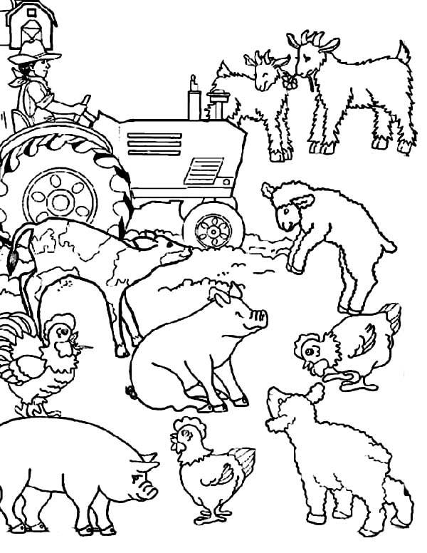 farm animal coloring that are printable and free happier human animals kidsplaycolor coloring pages Farm Animals Coloring Page