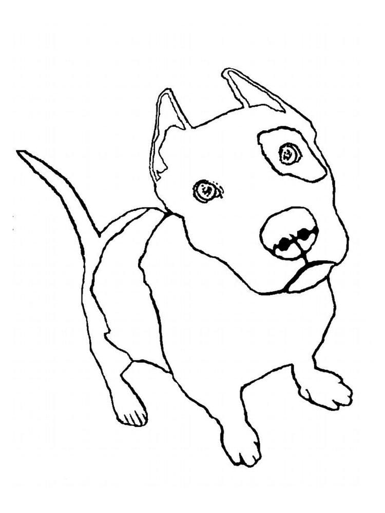 free pitbull coloring printable for kids my favorite color is black animals sheet blend coloring pages Pitbull Coloring Page
