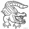 free printable alligator coloring for kids cool2bkids home 4t9aax6rc paw patrol to color coloring pages Coloring Page Alligator
