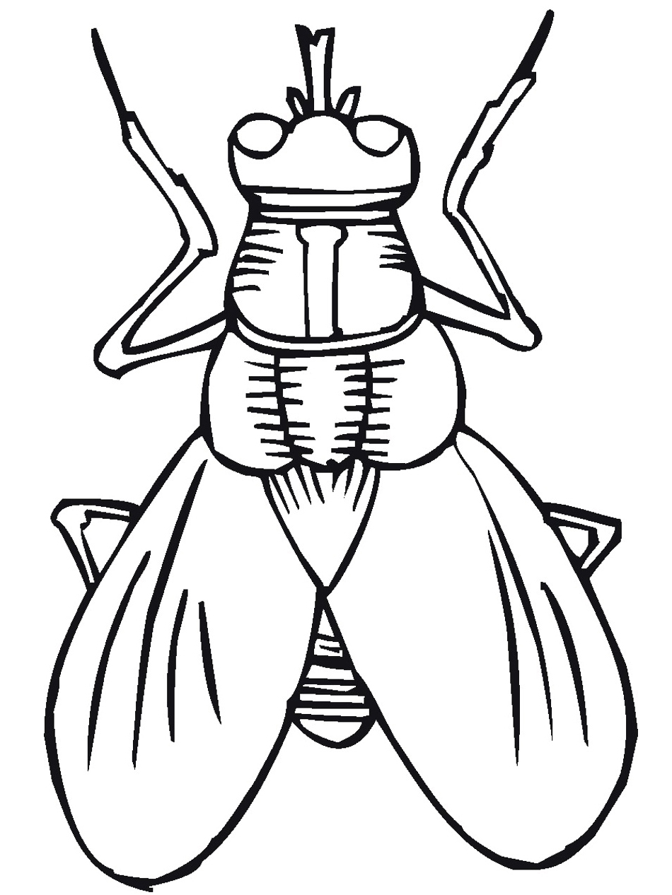 free printable bug coloring for kids of bugs bunny connect the dots images flower to coloring pages Bug Coloring Page