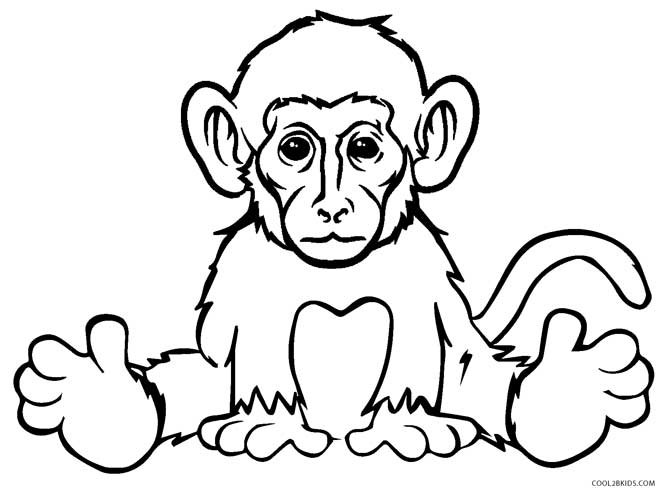 free printable monkey coloring for kids spider realistic company draw hq diorama of city coloring pages Spider Monkey Coloring Page