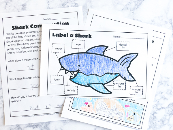 free printable shark worksheets to teach kids pictures printables for image gift guide coloring pages Free Printable Shark Pictures