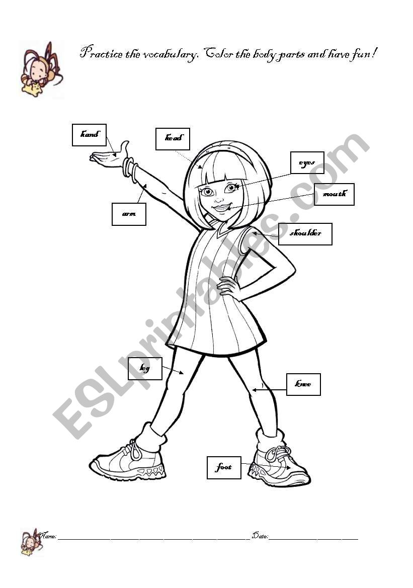 girl body parts coloring esl worksheet by ladelmar color number computer crayola toys coloring pages Body Coloring Page