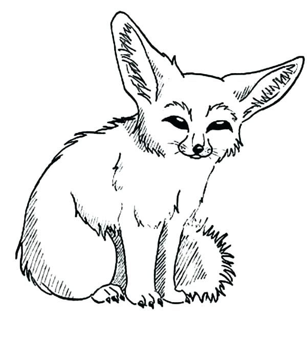 mammals foxes kit fox coloring fennec border for paper cool cars to color kids coloring pages Fennec Fox Coloring Page