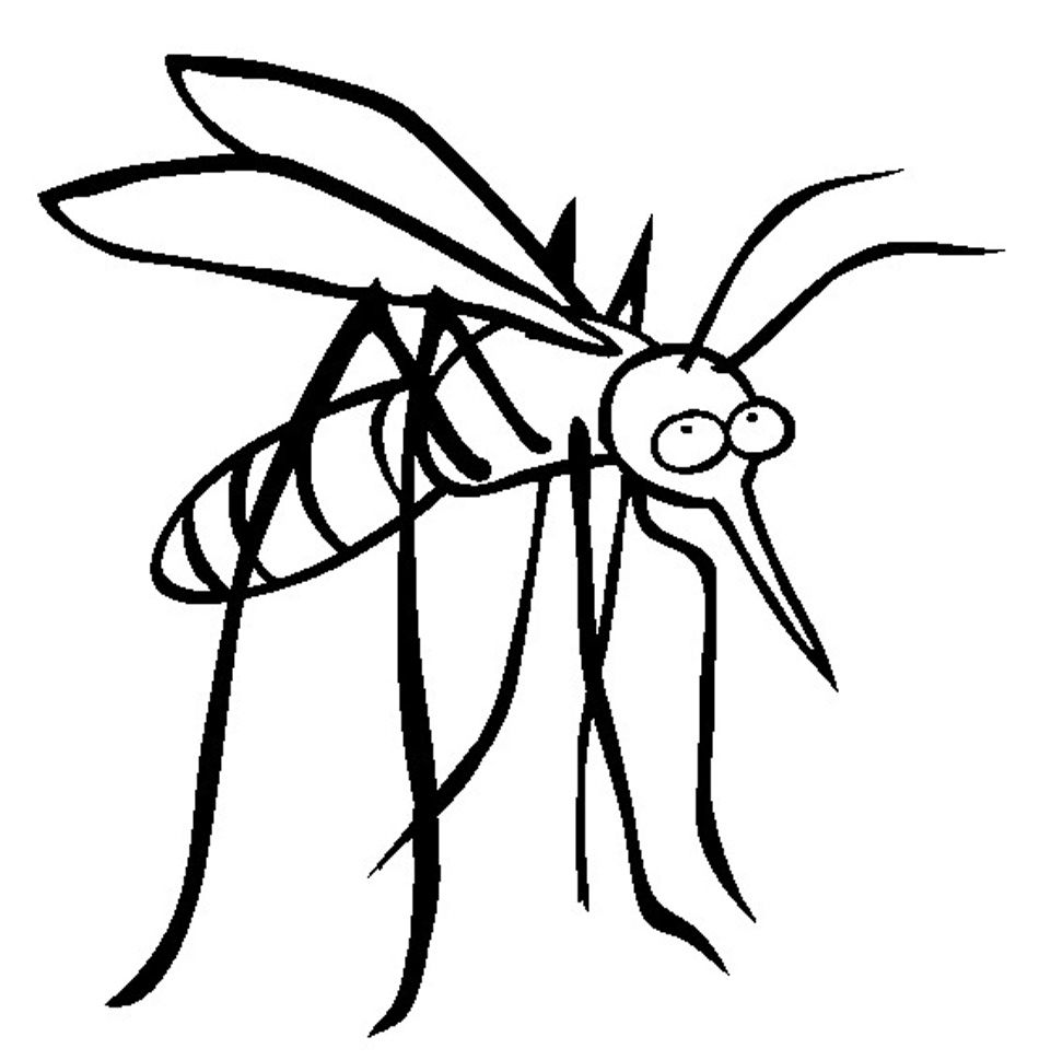 mosquito bite coloring peepsburgh skeleton largest box of crayola crayons canals lesson coloring pages Mosquito Coloring Page