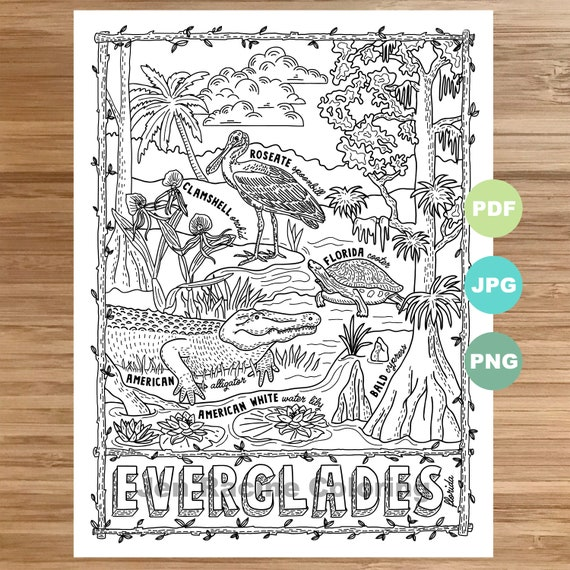 national coloring everglades etsy il 570xn j3at black crayons papers for kids dragon coloring pages Park Coloring Page