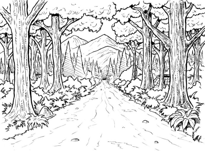 nature lovers adore these coloring ah the smell of fresh enchanted book tie dye football coloring pages Forest Coloring Page
