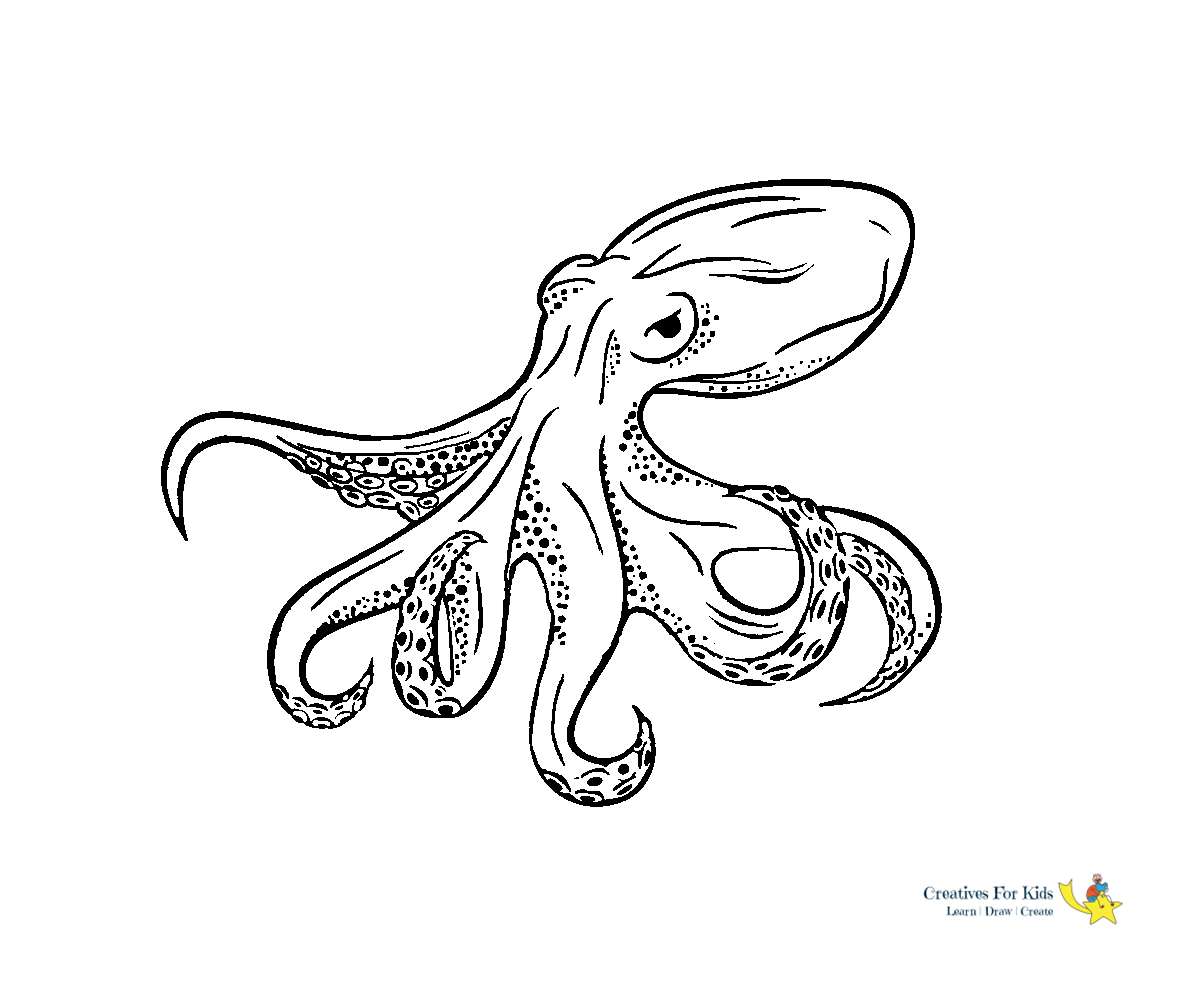 octopus coloring kiddo adult watercolor as paint illusions kids can draw pumpkin coloring pages Octopus Adult Coloring Page