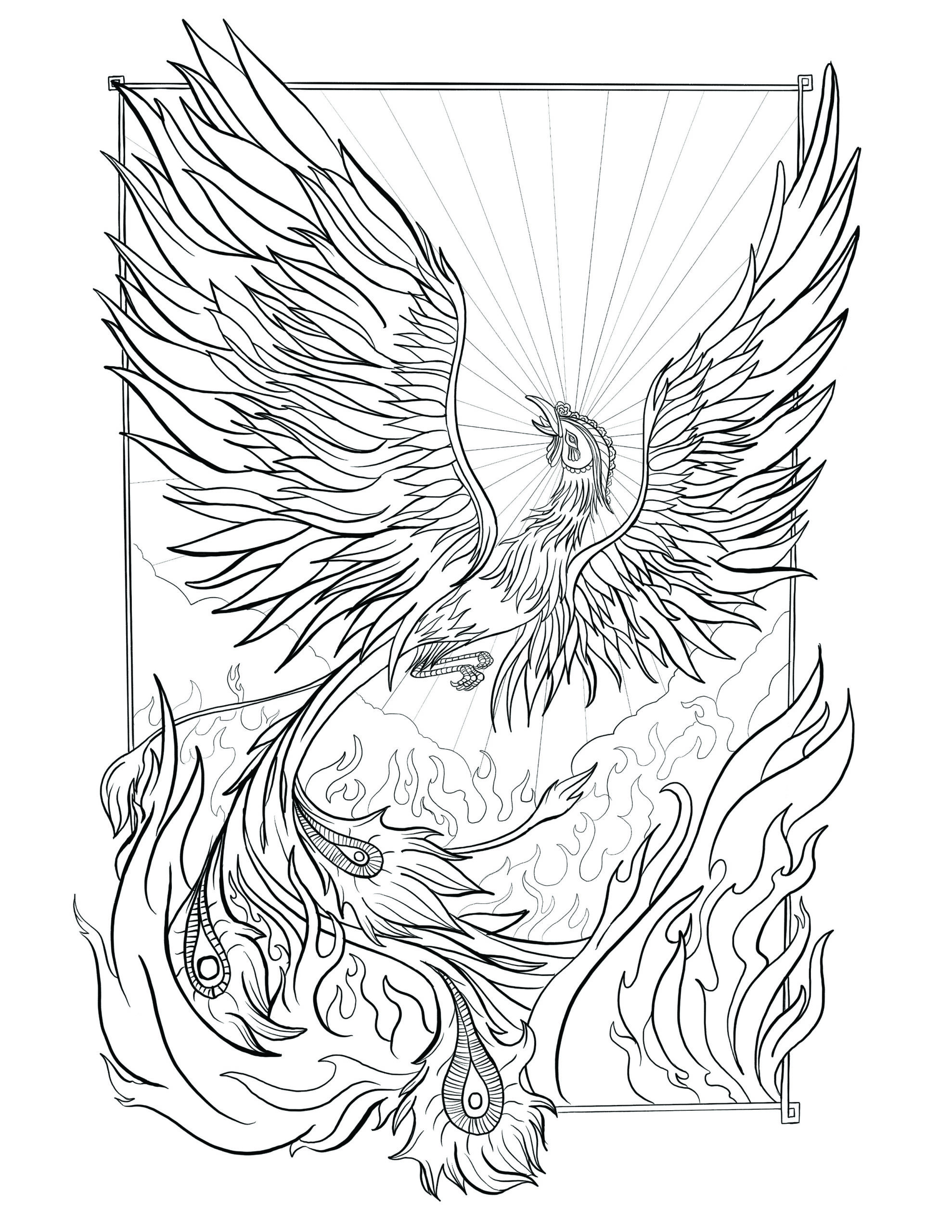 phoenix coloring by ben lew on dribbble rebirth pheonix window designer fuchsia vs red coloring pages Phoenix Coloring Page
